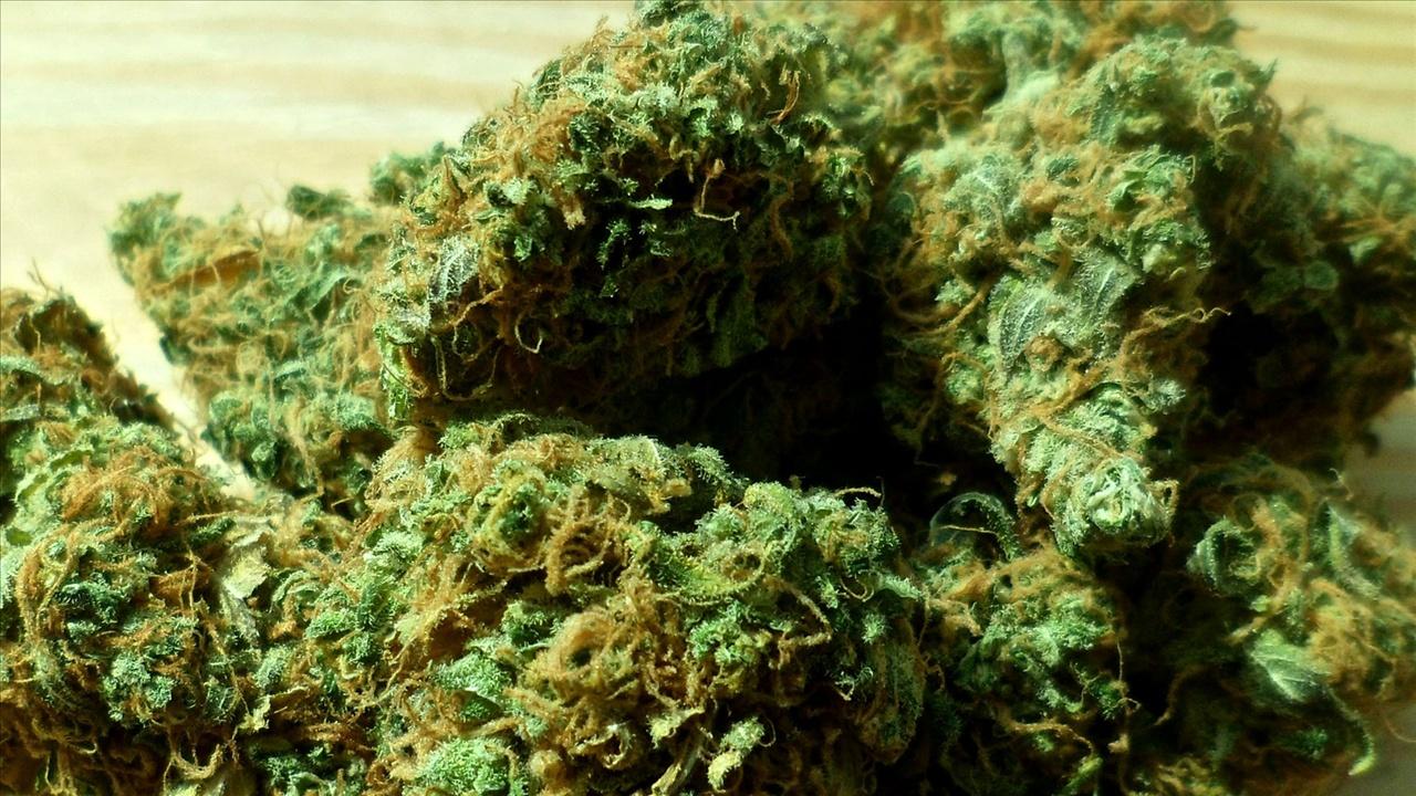 marijuana_4_20150326082135