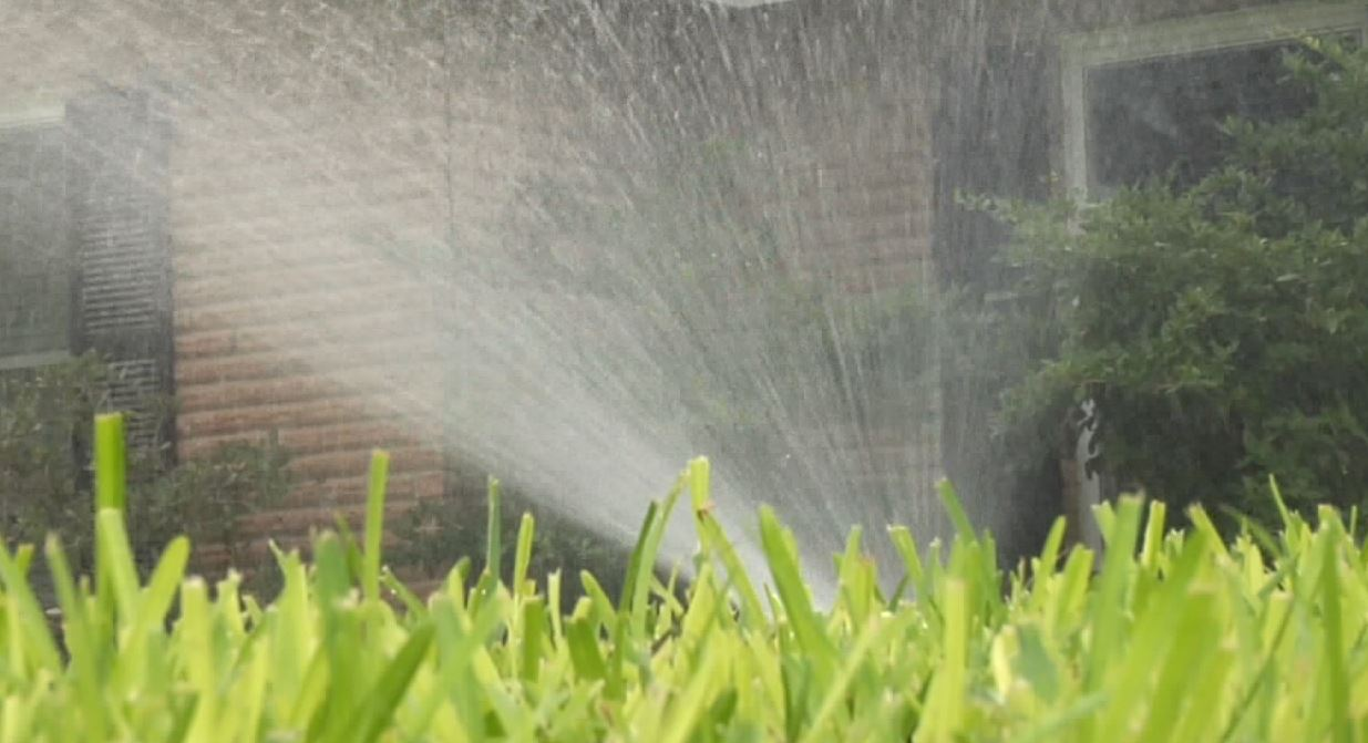 water your lawn_1428110384702.JPG