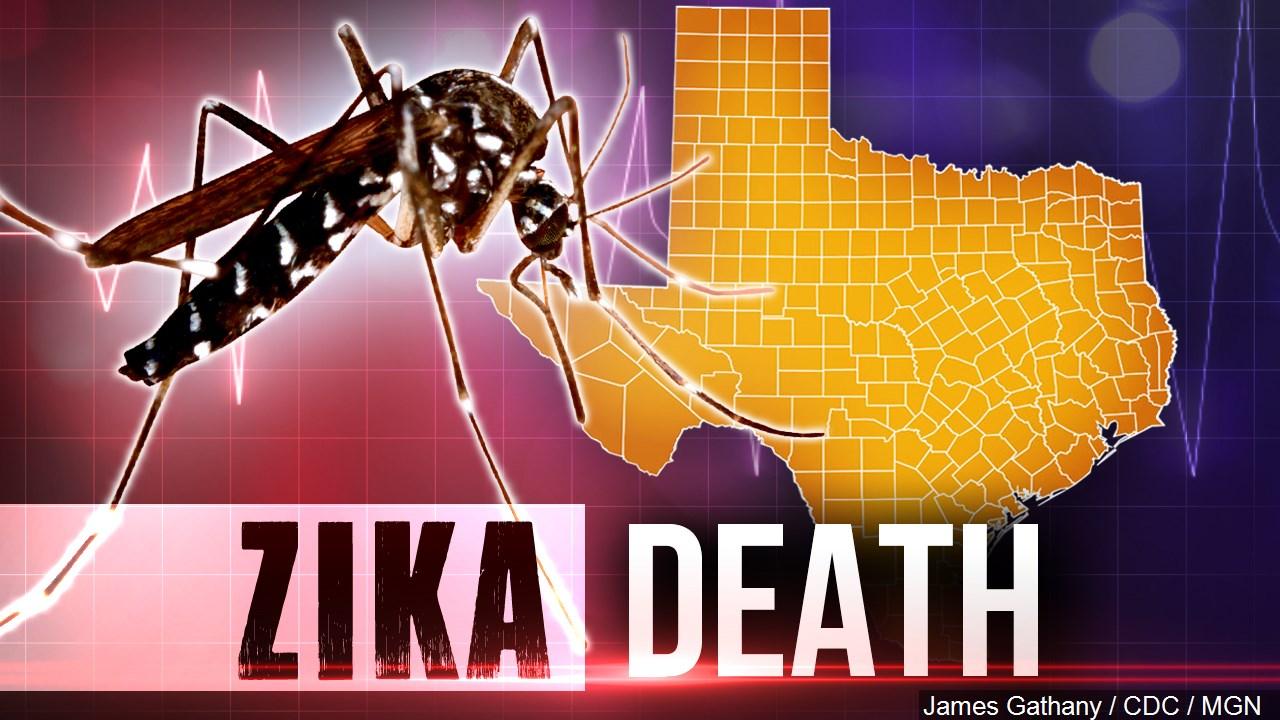 ZikaDeath_MGN_1470785488204.jpg
