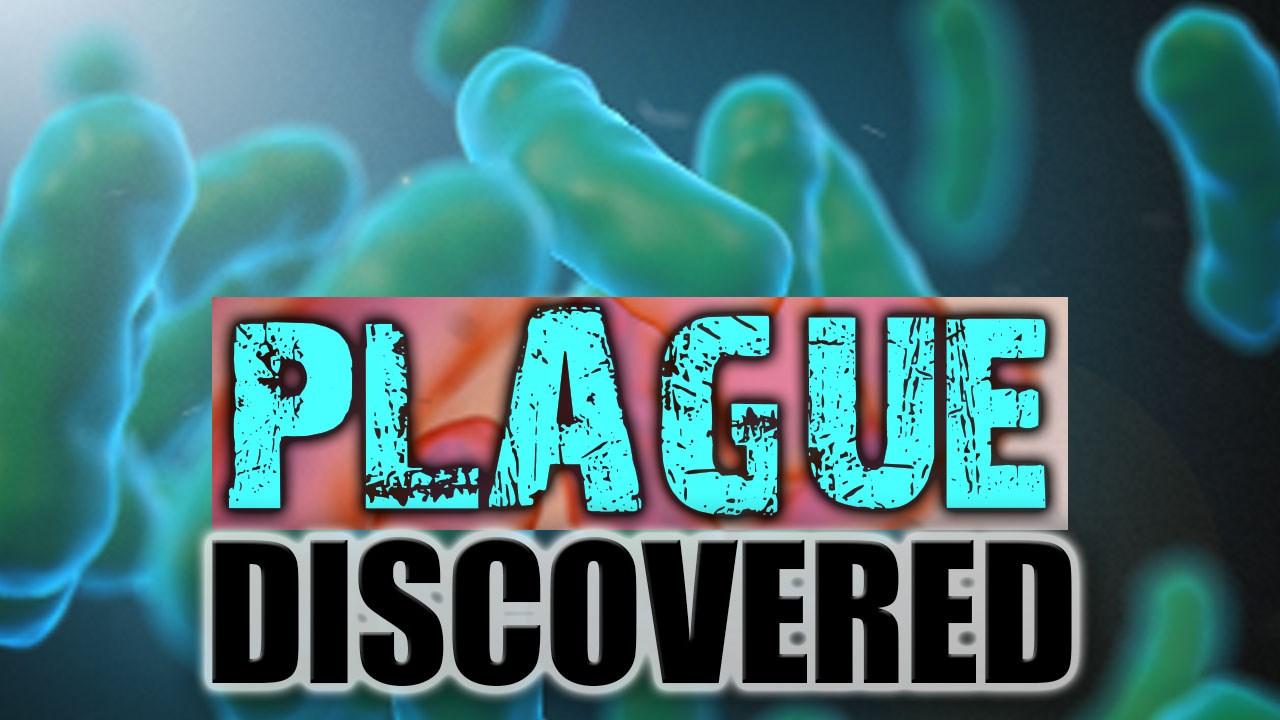 Plague_MGN_1472764323201.jpg