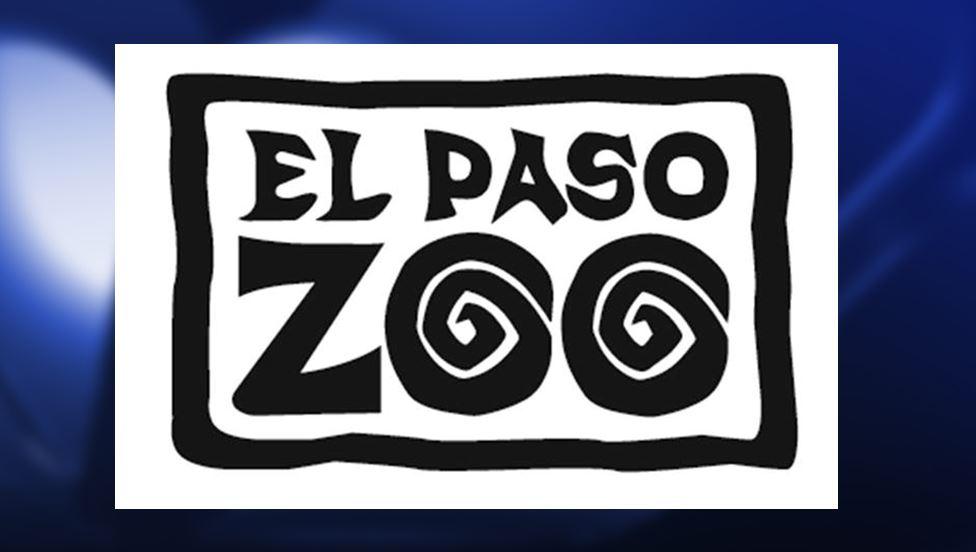 EL PASO ZOO_1494353948739.JPG