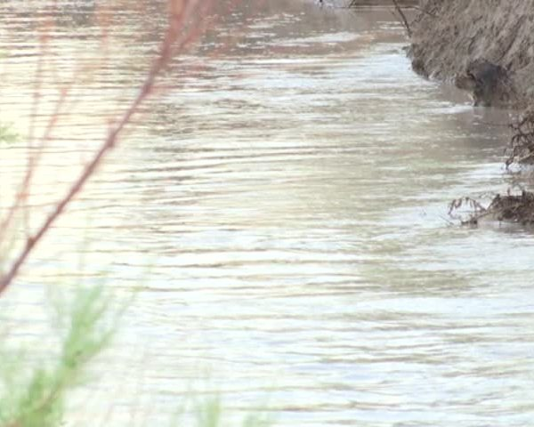 Socorro Flooding Keeps Woman Stranded_60707878