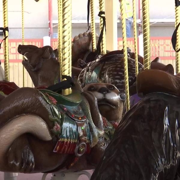 New zoo carousel aims to educate community