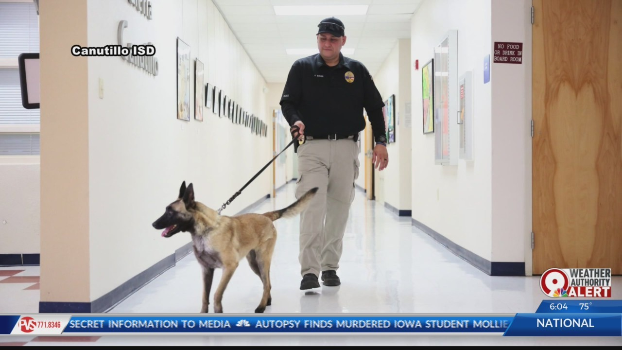Canutillo ISD has a new drug and weapon sniffing dog