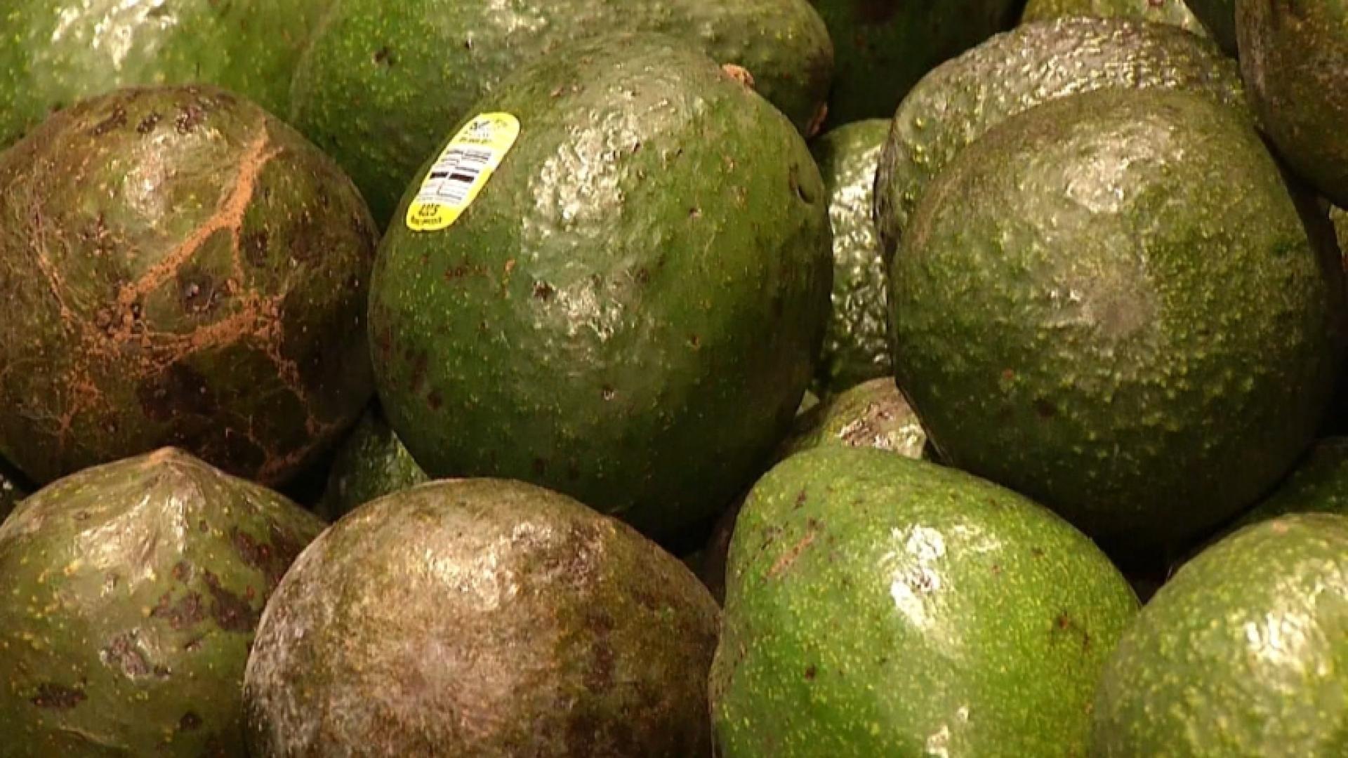 NC_avocado0830_1920x1080_1535737559119.jpg