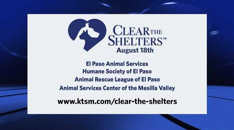 shelters_1534223007978.jpg