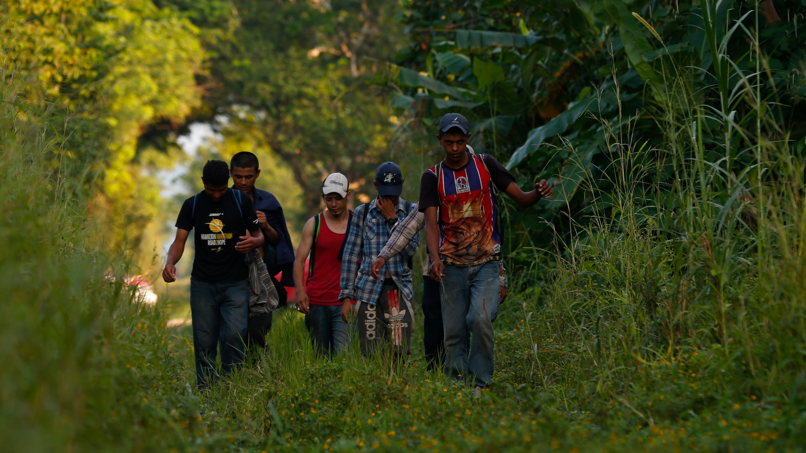 Central_America_Migrant_Caravan_03275-159532.jpg50616343