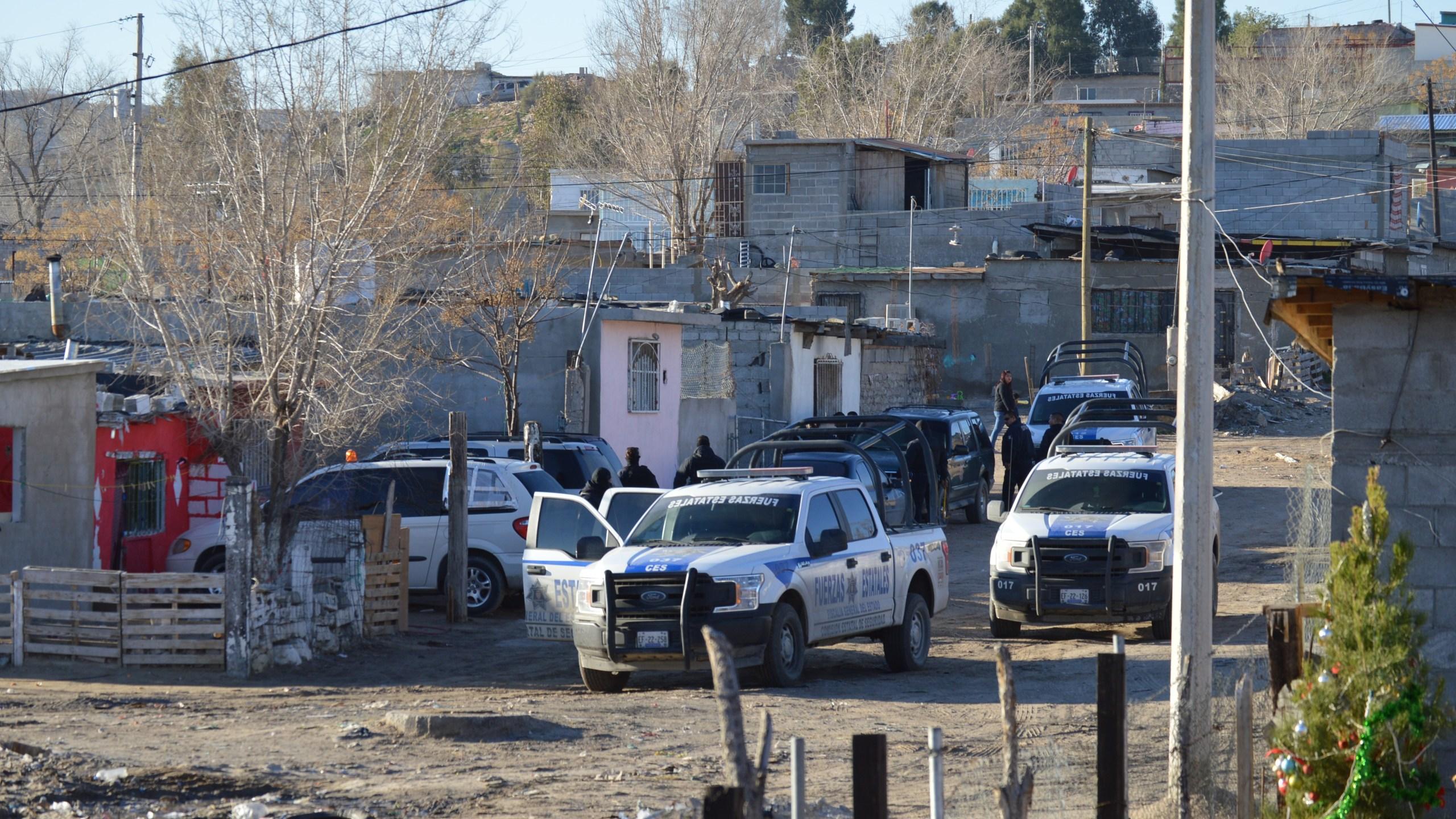 Border Patrol and Chihuahuas Police_1548250992417.JPG.jpg