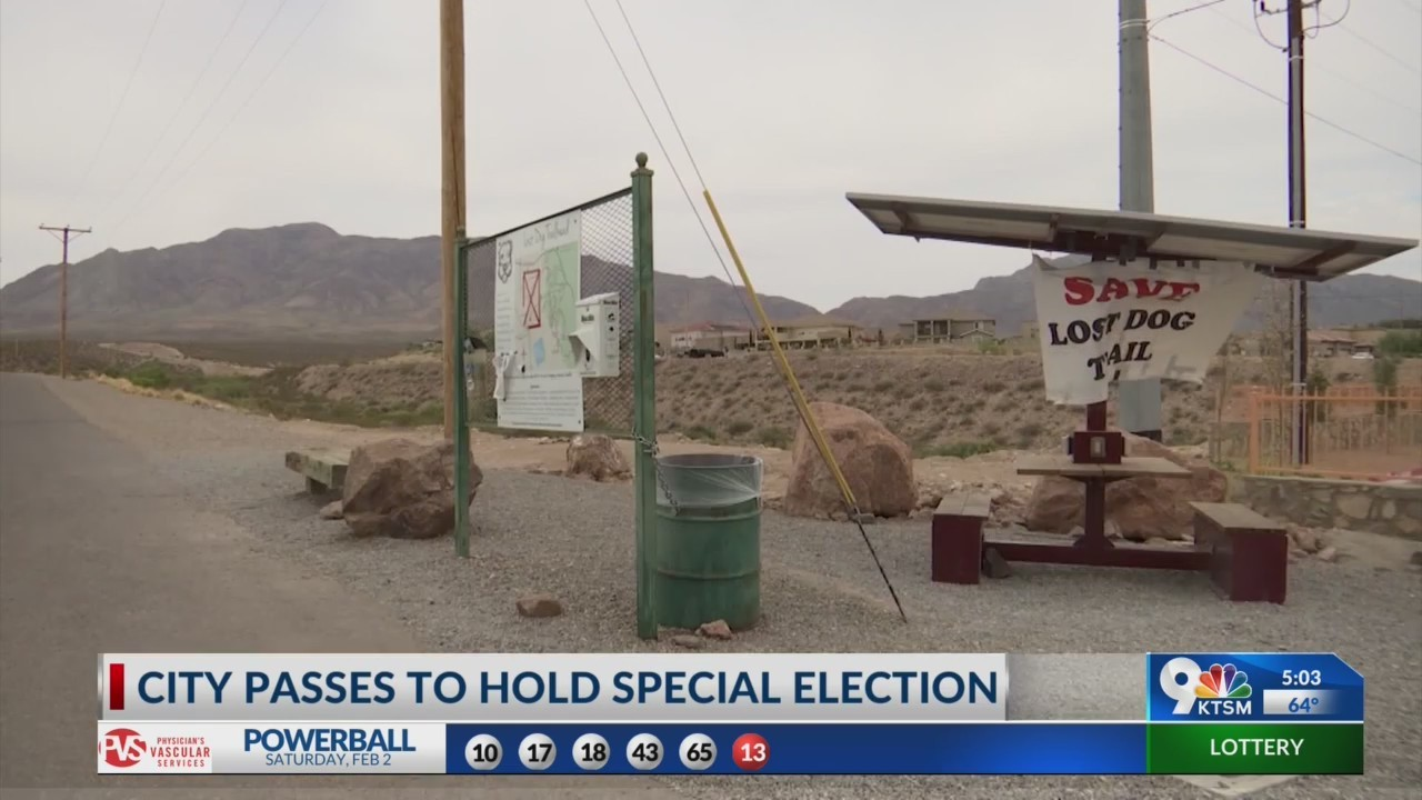 City council decides to hold special election