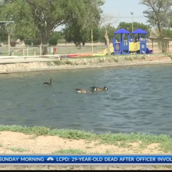 Moms on Board to bring all-inclusive park