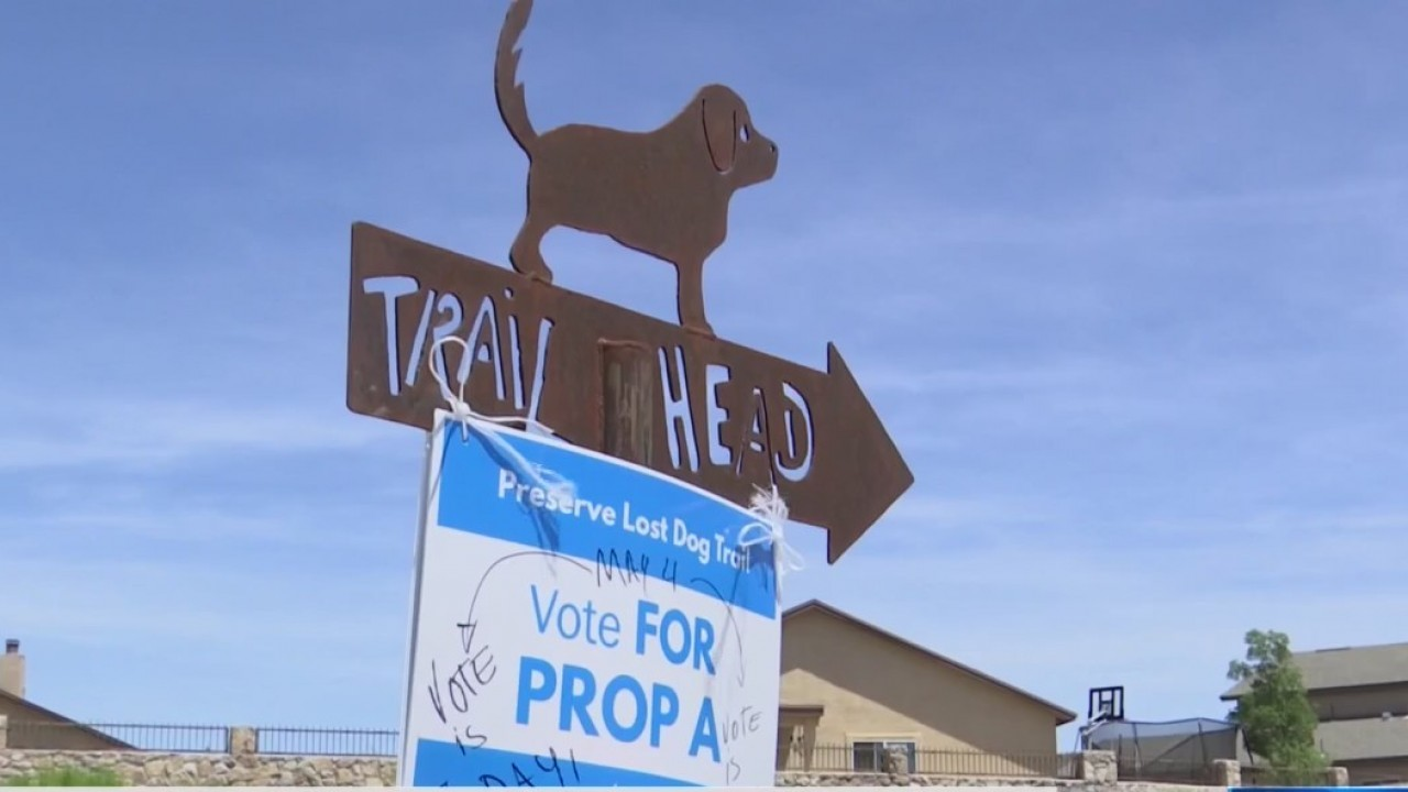 Lost dog trail voter turnout