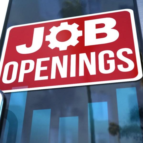 jobs_1559858375138.jpg
