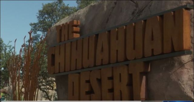 Chihuahuan Desert exhibit opens at El Paso Zoo